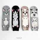 襪子 韓國原裝動物中筒襪 柒彩年代【NRS1】