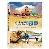 史小旺的神奇筆DVD 改編自荷蘭兒童文學獎作者瞳.泰雷翰著作