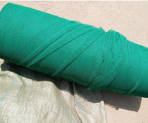 翠綠色防鳥網養殖網菜園