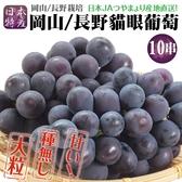 【果之蔬-全省免運】日本長野/岡山貓眼巨峰葡萄【約10串/約3.5公斤原箱】