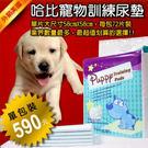 【哈比狗狗】寵物訓練尿布墊‧單包裝72片...
