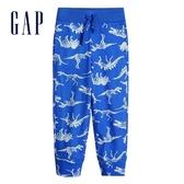 Gap男幼童 棉質舒適印花鬆緊針織褲 442430-恐龍圖案