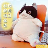 丑貓咪超萌暖手抱枕布娃娃公仔女生抱抱熊毛絨玩具送女友搞怪玩偶gogo購