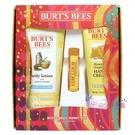 【彤彤小舖】Burt s bees 蜜蜂爺爺 蜂蜜節慶禮盒組 3件組 2020蜂蜜禮盒 護唇膏 潤膚乳 手部修護霜