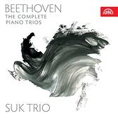 【停看聽音響唱片】【CD】貝多芬:鋼琴三重奏全集 (4CD)
