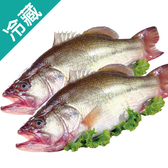 加州鱸魚2尾(300~400g/尾)【愛買冷藏】