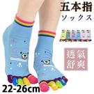 多色五指襪 熊熊款 五本指