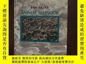 二手書博民逛書店Animal罕見behavior An Evolutionary
