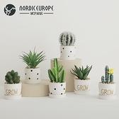 創意北歐多肉仿真植物盆栽擺件ins室內客廳擺設仙人掌盆景裝飾品
