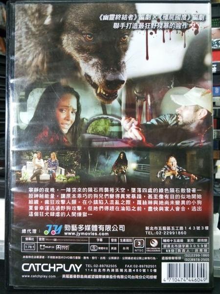 挖寶二手片-P03-376-正版DVD-電影【樂下星情/Country Strong】-雙面情人-葛妮絲派特洛(直購價)