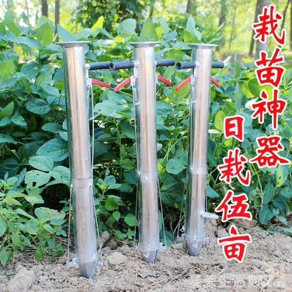栽苗器移栽器移苗器蔬菜瓜苗辣椒種植器種菜栽苗神器播種器點播機『快速出貨YTL』