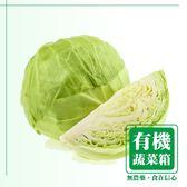 莫菲思 信心有機認證蔬菜箱 (D-高麗菜X2顆)