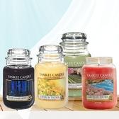 Yankee Candle 瓶中燭 (大) 22oz【娜娜香水美妝】香氛蠟燭