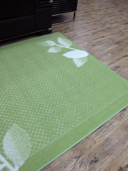 范登伯格-青田★日本抗菌柔美地毯-綠-200x290cm