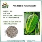 【綠藝家】A85.青羅蔓種子(青羅美生菜)2克(約2000顆)