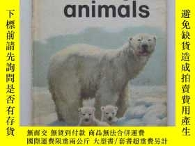 二手書博民逛書店Baby罕見Animals (Ladybird leaders)