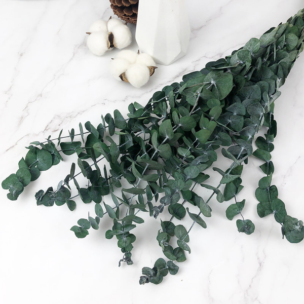 35-45CM進口永生小圓尤加利葉 -不凋乾燥花圈 乾燥花束 不凋花 拍照道具 室內擺飾 乾燥花材-48元/支