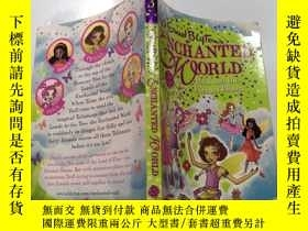 二手書博民逛書店enchanted罕見world 魔幻世界Y212829