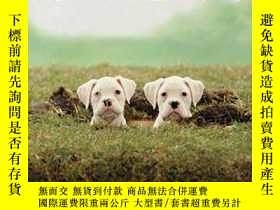 二手書博民逛書店Pup罕見Parenting: A Guide to Raising a Happy, Well-Trained