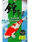 {台中水族} 福壽 高蛋白 錦鯉飼料 速長 (中粒) 20kg/袋 特價--池塘魚類適用 特價