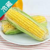 甜玉米1盒(2條/盒)【愛買冷藏】