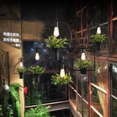 吊燈 植物單頭酒館酒吧櫥窗咖啡廳主題餐廳 現貨快出YJT