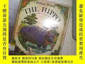 二手書博民逛書店THE罕見HIPPO ANIMAL WORLD 河馬動物世界Y2
