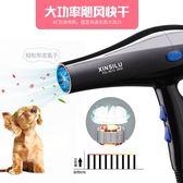 寵物吹風機大功率靜音大小型犬狗狗吹毛神器貓咪烘乾機吹水機專用【蘇迪蔓】