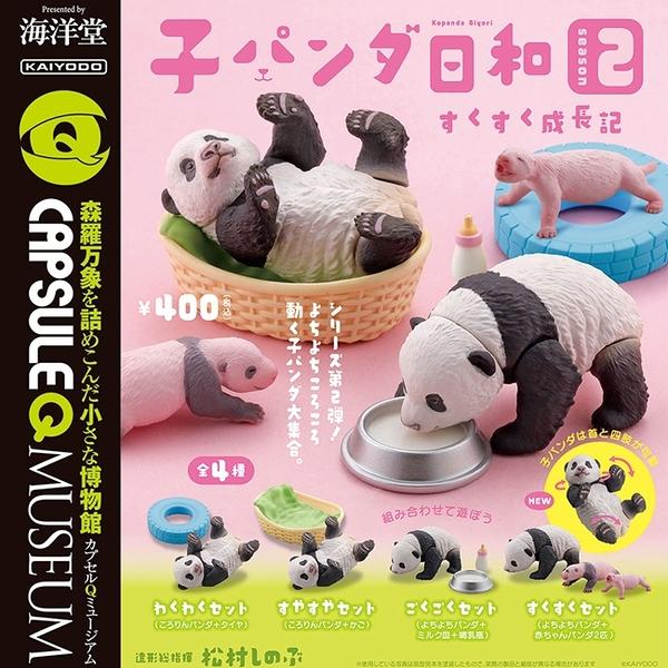 全套4款【日本正版】圓滾滾可愛小貓熊 P2 扭蛋 轉蛋 圓滾滾熊貓 動物模型 海洋堂 - 083067