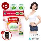 【船井】burner倍熱  健字號食事纖纖粉 90回分享組