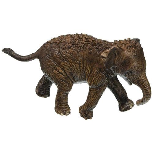 Schleich 史萊奇 - 亞洲象寶寶