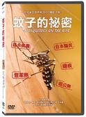 蚊子的秘密DVD