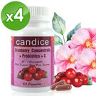 【Candice】康迪斯天然蔓越莓+益生菌膠囊 (60顆*4瓶)25倍濃縮蔓越莓Cranberry