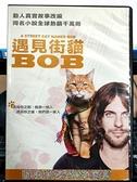 挖寶二手片-P01-269-正版DVD-電影【遇見街貓 BOB】-真人故事改編*母子威龍導演(直購價)