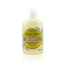 【南法香頌】歐巴拉朵 2in1薰衣草橄欖洗髮沐浴精(250ml)_送南法隨身包x2包