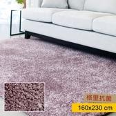 HOLA 格里防螨抗菌地毯160x230cm 紫