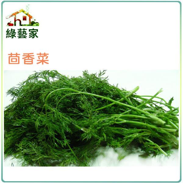 【綠藝家】大包裝F07.茴香菜種子230克(約15萬顆)