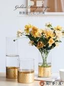 家用北歐透明玻璃金色花瓶插花水培客廳家居擺件【淘夢屋】
