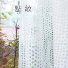 Dazo設計紗簾-點紋 寬140cm×高250cm 窗紗/門簾/隔間簾/搭配窗簾布簾使用【MSBT 幔室布緹】