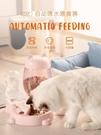 宠物餵食器 貓咪自動喂食器二合一體狗狗飲水機貓食盆貓糧盆神器貓碗寵物用品【82折下殺】