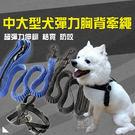 【牽繩】中大型犬彈力胸背牽繩 寵物外出 寵物牽繩 狗散步牽繩 狗牽繩 彈力胸背牽繩 遛狗 耐扯
