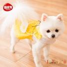可愛寵物衣服小狗狗貓咪衣服薄款夏季小型犬【倪醬小鋪】