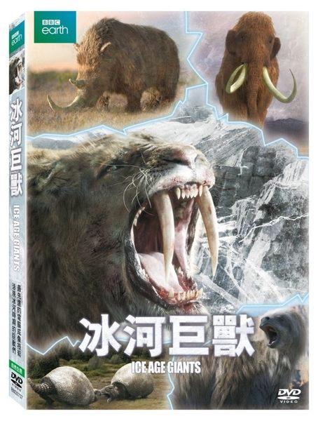 BBC 冰河巨獸 DVD (購潮8)