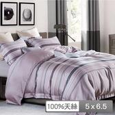 【貝兒居家寢飾生活館】頂級100%天絲鋪棉涼被(布蘭妮 150×195cm)