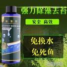 魚池魚缸除藻劑滅藻劑去除絲藻褐藻黑毛藻綠水去青苔不傷魚去苔劑 快速出貨