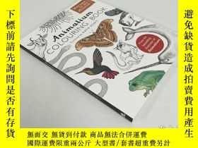 二手書博民逛書店Animalium罕見colouring book動物圖鑑塗色書