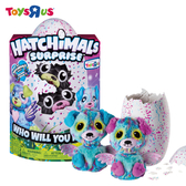玩具反斗城 Hatchimals 魔法寵物蛋-雙胞胎遊戲組TRUX