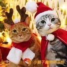 貓咪發箍狗狗新年帽子過年貓發飾頭飾寵物圣誕搞怪飾品【小獅子】