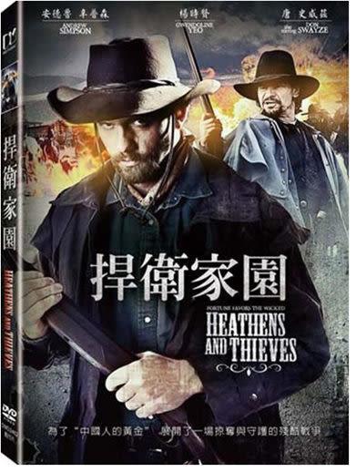 捍衛家園 DVD(購潮8)