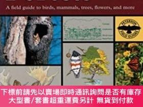 二手書博民逛書店A罕見Field Guide To Eastern Forests, North AmericaY255174